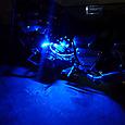 V-max 電飾のテスト ブルー